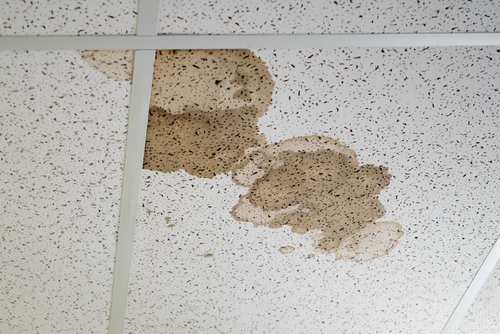 What Happens If You Leave a Leaking Roof?